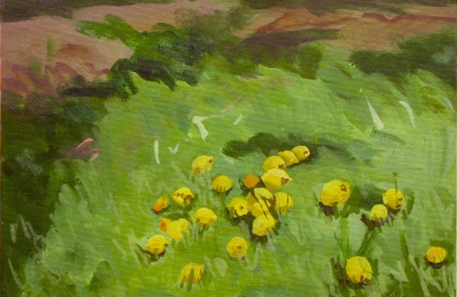 2002_16_lemons-in-her-garden