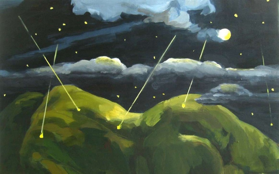 2004_29_vallende-sterren-in-augustus-1-2