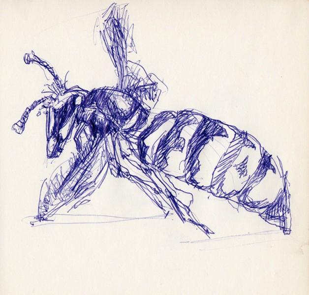 2001-wasp