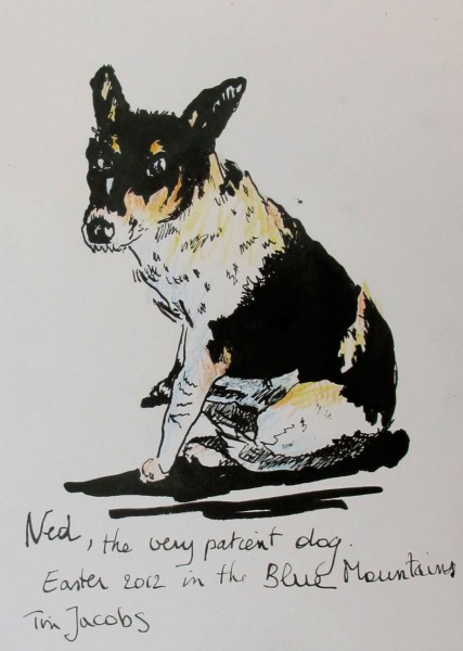 2012-23-Ned-patient-dog