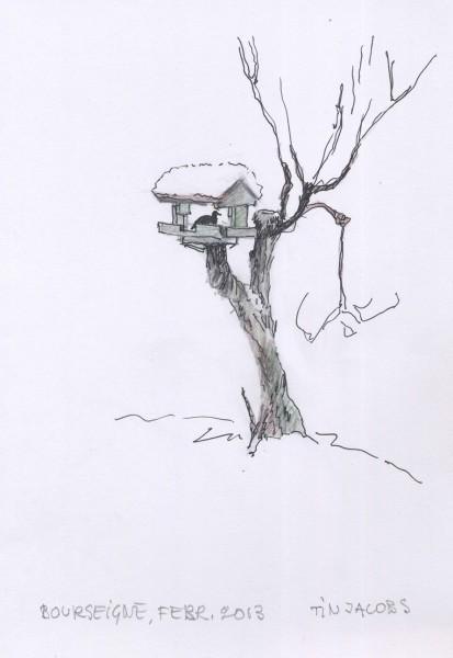 2013-1vogel-thuis-Bourseigne