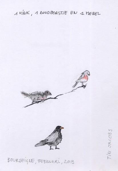 2013-vogels-Bourseigne
